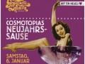 Cosmotopias Neujahrssause
