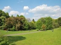 Am Rombergpark