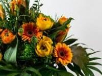 Fründt E. Blumen und Geschenke