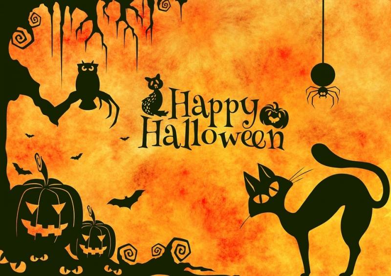Halloween 30 Oktober.Halloween Party Am Di 30 Oktober 2018 19 00 Uhr Fur