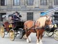 25. Reiter- und Kutschenkorso